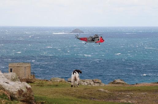Urlaub mit Hund in Cornwall