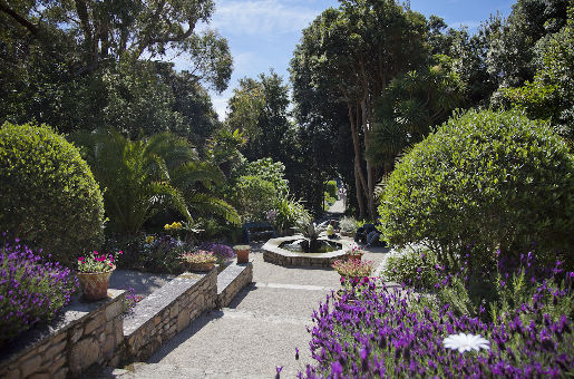 Abbey Garden Tresco