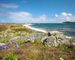 AKüste Cornwall