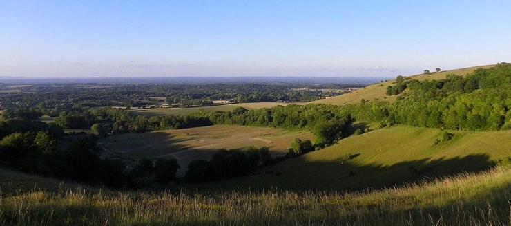 sussex downs goodwood