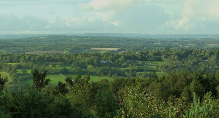 ashdown forest ost sussex urlaub