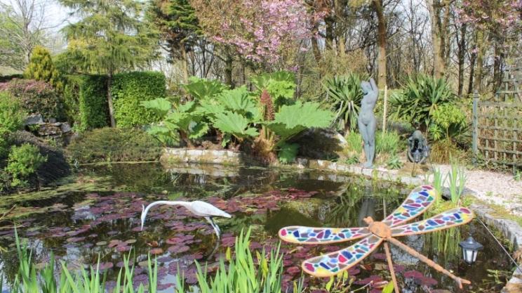Homestead Woodland Garden