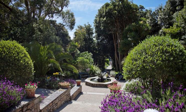 Südenglands beste Sommergärten Tresco Abbey Garten
